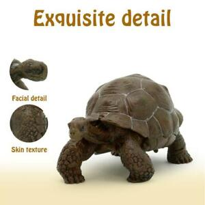 "3 "" Galapagos Tortoise Turtle Model Figure Animal Kids Toy Collectable Presents"