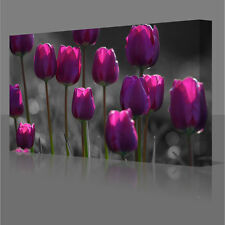 16x12 Inch Purple Tulips Flowers Framed Canvas Wall Art Picture Print