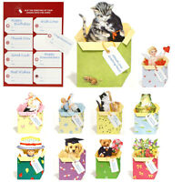 54 3D Pop-up Greeting Cards for all Occasions EC0033