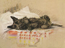 SCOTTISH TERRIER CHARMING SCOTTIE DOG GREETINGS NOTE CARD DOG WAKES UP ON BED
