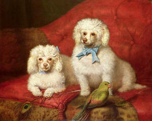 Dream-art Oil painting beautiful two Poodle dogs with birds feather Hand painted