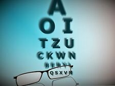 2 polarisierende Brillengläser aus dünnerem Kunststoff n1,6  inkl. MONTAGE