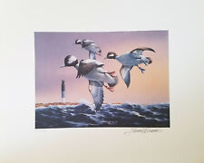 Ducks Unlimited Loon Print 1996 Doug Berg signed Loons Animals MN lake WI