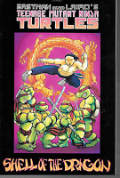 TMNT Color Special Shell of the Dragon Eastman Laird  Mirage 1990 OOP 1st Print