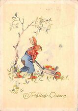AK Hase mit Schubkarre Ostereir Fröhliche Ostern