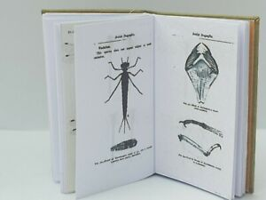 1:12 scale, BOOK, BRITISH DRAGONFLIES, Hand Crafted By Ken Blythe