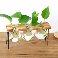 3 types of beautiful glass vase, wooden plant stand, hydroponic flower