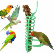 Bird Feeder Parrot Cage Perch Food Basket Fruit Vegetable Millet Container