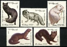 Russia 1980 SG#5008-5012 Fur-Tearing Animals MH Set #D66684