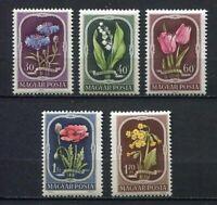 31820) HUNGARY 1951 MNH** Flowers 5v Scott# 974/78