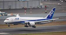 B-7E7 B-787 ANA All Nippon Airways B787 Airplane Desk Wood Model Big New