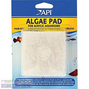 API Algae Pad For Acrylic Aquariums Sturdy Long Lasting Hand Held Algae Scrubber