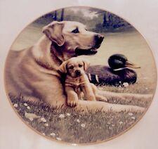 ** Hamilton Collection golden Labrador collector plate FATHER & SON by Jim Lamb