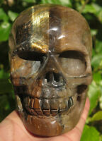 124mm 3LB 1.5OZ Natural Gold&Blue Tigers Eye Crystal Carving Art Skull