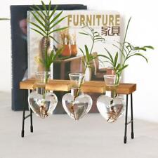 Test Tube Flower Bud Vase Planter Decorative Terrariumin for Office Cafe-3
