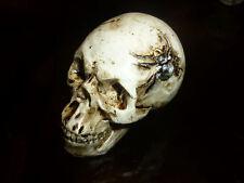 TESCHIO RAGNO FATTO DIPINTO A MANO horror zombie gotico halloween fermacarte emo