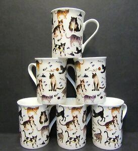 Set Of 1x/2x/4x/6x DATA Cat Chintz Fine Bone China Mugs Panama Shape 10 Floz