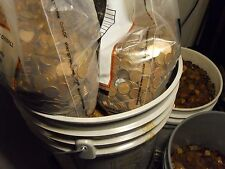 100 LBS Copper Bullion Pennies 1959-1982 US Cents by the Pound W/ Wheat Backs &.