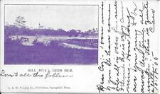 Mill Pond Deer Island ME nice vintage postcard postally used in 1905