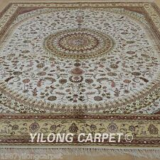 Yilong 8'x10' Silk Area Rug Handknotted Bordered Carpets Handmade For Sale 1270