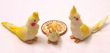 1:12 Scale 2 Large & A Small White Cockatoo Dolls House Exotic Pet Bird C2