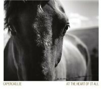 At The Heart Of It All - Capercaillie (2013, CD NEUF)
