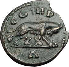MACRINUS 217AD Parium Parion MYSIA Authentic Ancient Roman Coin SHE WOLF i64953