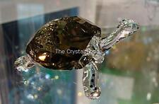 SWAROVSKI CRYSTAL GALAPAGOS TORTOISE 2010 EVENT PIECE 995036 MINT BOXED RETIRED