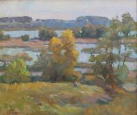 Original Far Horizonts Landscape Oil Artwork Impressionism ART