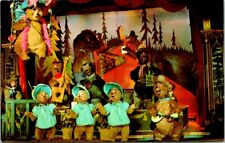 C38-3568, The Country Bear Jamboree, Disneyland, Postcard.