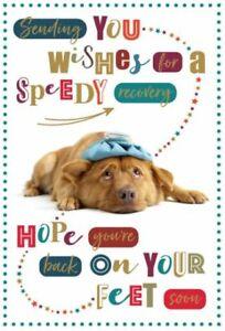 Get Well Card   Dog