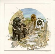 Newfoundland Dog Newf Limited Edition Print by Barbara Hands Boz Last One!