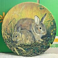 Royal Doulton-Fine Bone China Plate-Cornfield Rabbits-Sue Warmer-Limited Edition
