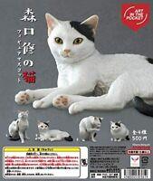 Cat figure mascot of Kitan Club Osamu Moriguchi Gashapon 4set comp mini figure