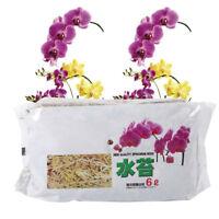6L Sphagnum Moss Bag Organic Fertilizer For Phalaenopsis Orchid Garden Supply ZY