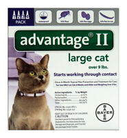 ADVANTAGE II LRG CAT