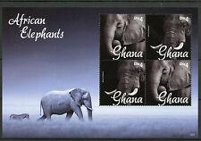 Ghana 2014 MNH African Elephants 4v M/S II Fauna Wild Animals