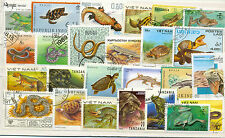 Reptiles-100 all different large medium(one or two newts!! )