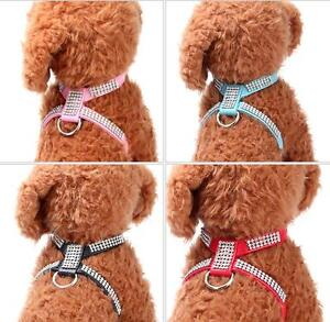 Teacup Toy Poodle Dog Harness Soft Leather Vest With Bling Rhinestone XXS/XS Pet