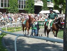 BEHOLDER 2014 PHOTO Ogden Phipps Horse Race BELMONT PARK Breeders Cup 3X WINNER
