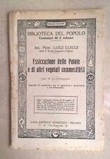ESSICCAZIONE DELLE PATATE E DI ALTRI VEGETALI COMMESTIBILI LUIGGI 1919