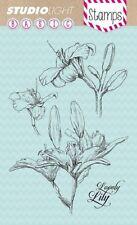 Studio Light di base chiaro Francobolli-Lily Set-stampsl 134 - 4 FRANCOBOLLI-CALLA-NUOVO
