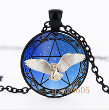 Owl and Pentagram photo Glass Dome black Chain Pendant Necklace wholesale