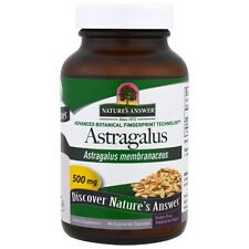 Astragalus, 500mg, 90 Capsules - Nature's Answer