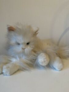 """Hosung 12"""" White Persian Cat soft toy Plush Realistic Look"""
