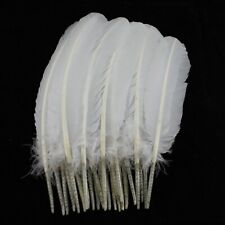 Turkey Feathers, White Turkey Round Quill Feathers 10-12 inches 20 pcs