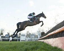 More details for altior 49 riidden by nico de boinville (horse racing) keyrings-mugs-photos