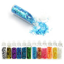 12 Pcs Glitter Powder Dust Set Nail Art Acrylic UV Gel Tips Set Decoration DIY