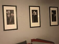 Home Interiors Black And White Floral Picture Set