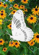 Butterfly Oval Window Decal 4x6inch Static Cling Decor for Glass Doors Mirrors R